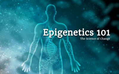 Epigenetics 101